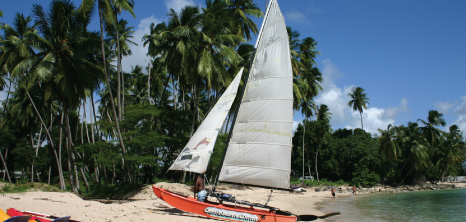 Sailboat Docked on a West Coast Beach, Barbados Pocket Guide