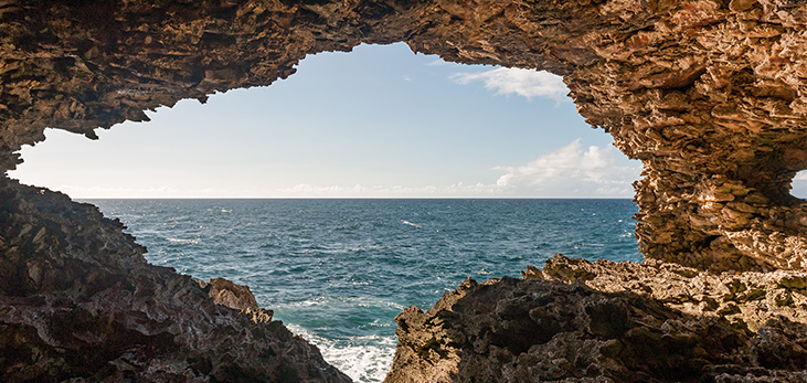 Inside View of the Animal Flower Cave, St. Lucy, Barbados Pocket Guide