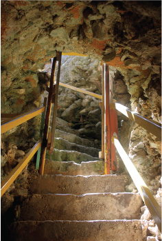 Stairs That Lead from the Cliff Down to the Animal Flower Cave, St. Lucy, Barbados Pocket Guide