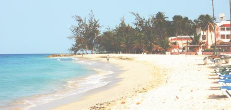Dover Beach, Christ Church, Barbados Pocket Guide