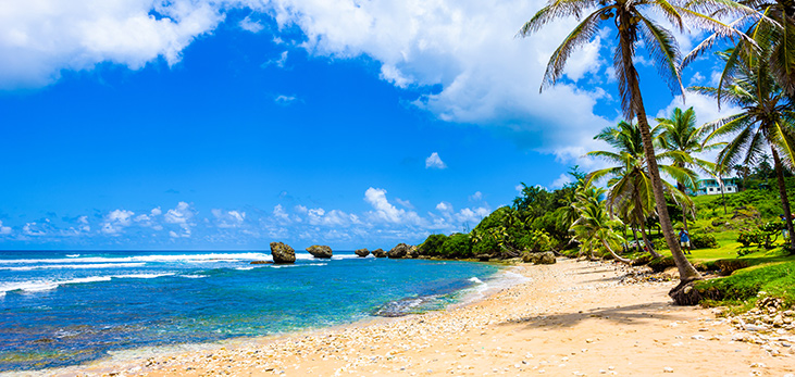 East Coast Beach, St. Andrew, Barbados Pocket Guide