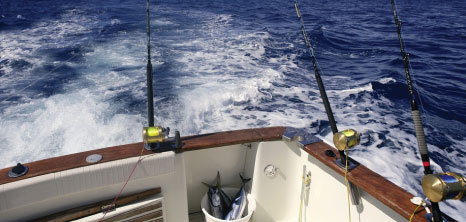 Deep Sea Fishing in Barbados' Warm & Tropical Waters, Barbados Pocket Guide
