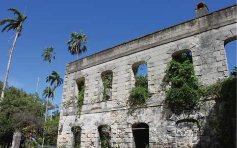Remains of the Once Magnificent Farley Hill Mansion, Farley Hill, St. Peter, Barbados Pocket Guide