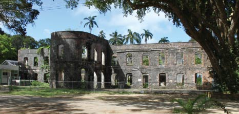 Farley Hill National Park - Barbados Pocket Guide