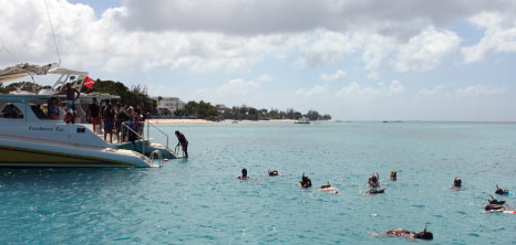 Visitors Disembarking a Catamaran on the West Coast to Swim with Turtles, Barbados Pocket Guide