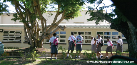 Pupils of the Coleridge & Parry Secondary School, St. Peter on the Way to Classes, Barbados Pocket Guide