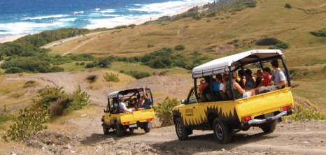 Adventureland 4x4 Jeeps Going Down a Steep Hill on the Island's East Coast, Barbados Pocket Guide