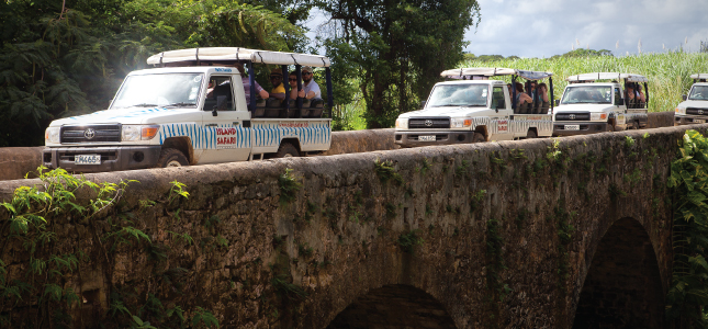 Convoy of Island Safari Jeeps on Tour in Barbados