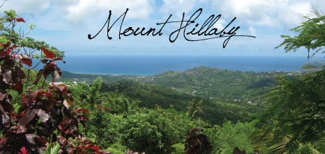 Scenic View of Mount  Hillaby, St. Andrew, Barbados Pocket Guide