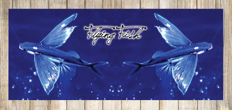 Flying Fish in Flight Over the Ocean, Barbados Pocket Guide
