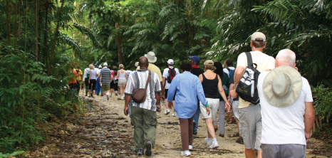 Hikers on a Sunday Morning Hike Through Apes Hill, St. James, Barbados Pocket Guide
