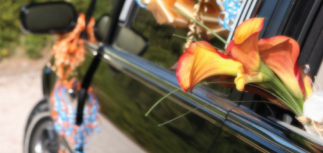 Decorated Limousine on a Wedding Day, Barbados Pocket Guide