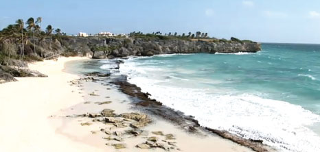 Harrismith Beach Barbados Pocket Guide
