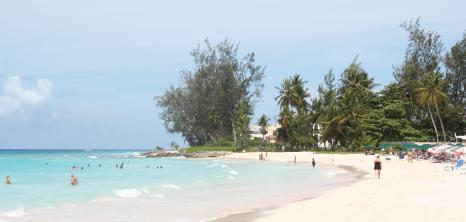 Accra Beach Barbados Pocket Guide