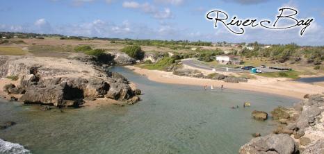 River Bay Barbados Pocket Guide