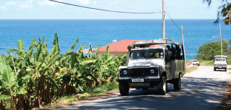 Island Safari Jeeps Touring the Countryside, Barbados Pocket Guide