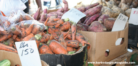 Local Produce on Sale at Agrofest, Barbados Pocket Guide