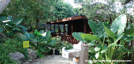 Tropical Gardens at Graeme Hall Nature Sanctuary, Christ Church, Barbados Pocket Guide