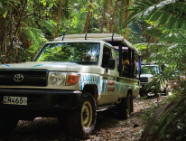 Close Up of Island Safari Jeeps on Tour in Barbados