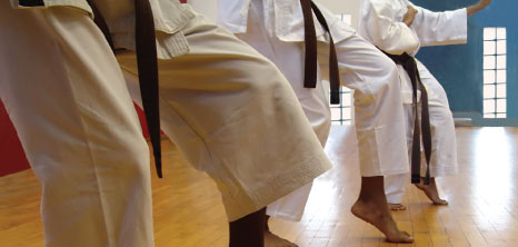 Martial Arts Classes in Progress, Barbados Pocket Guide