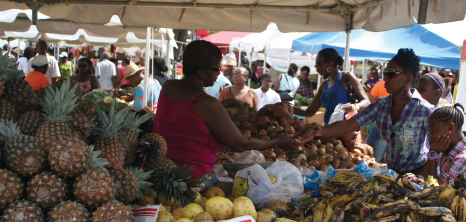 Produce on Sale at Agrofest, Queens Park, Bridgetown, St. Michael, Barbados Pocket Guide