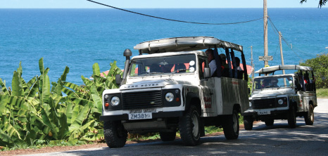 Island Safari Jeeps on Tour in the East Coast, St. Andrew, Barbados Pocket Guide