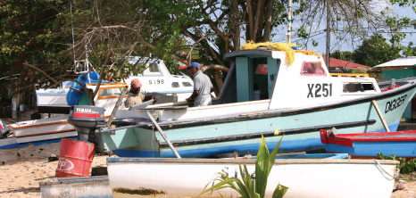 Fishing Boats on the Beach at Oistins, Christ Church, Barbados Pocket Guide