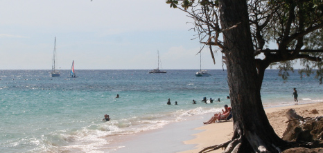 Sea Bathers at Folkestone Beach, Holetown, St. James, Barbados Pocket Guide